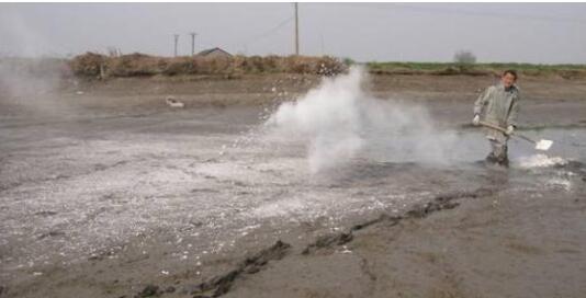 必威体育备用网址平台养殖中常用的理化型水质改良剂